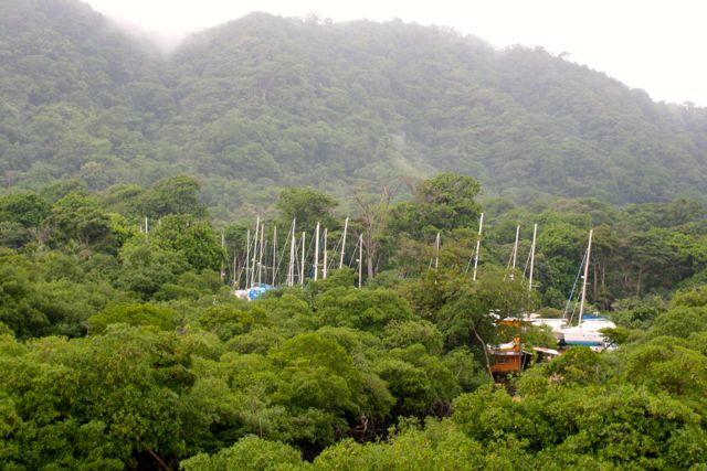 Panamá – in the jungle