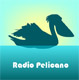 Radio Pelicano Segelyacht INTI